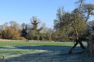 Fields in Aston Tirrold